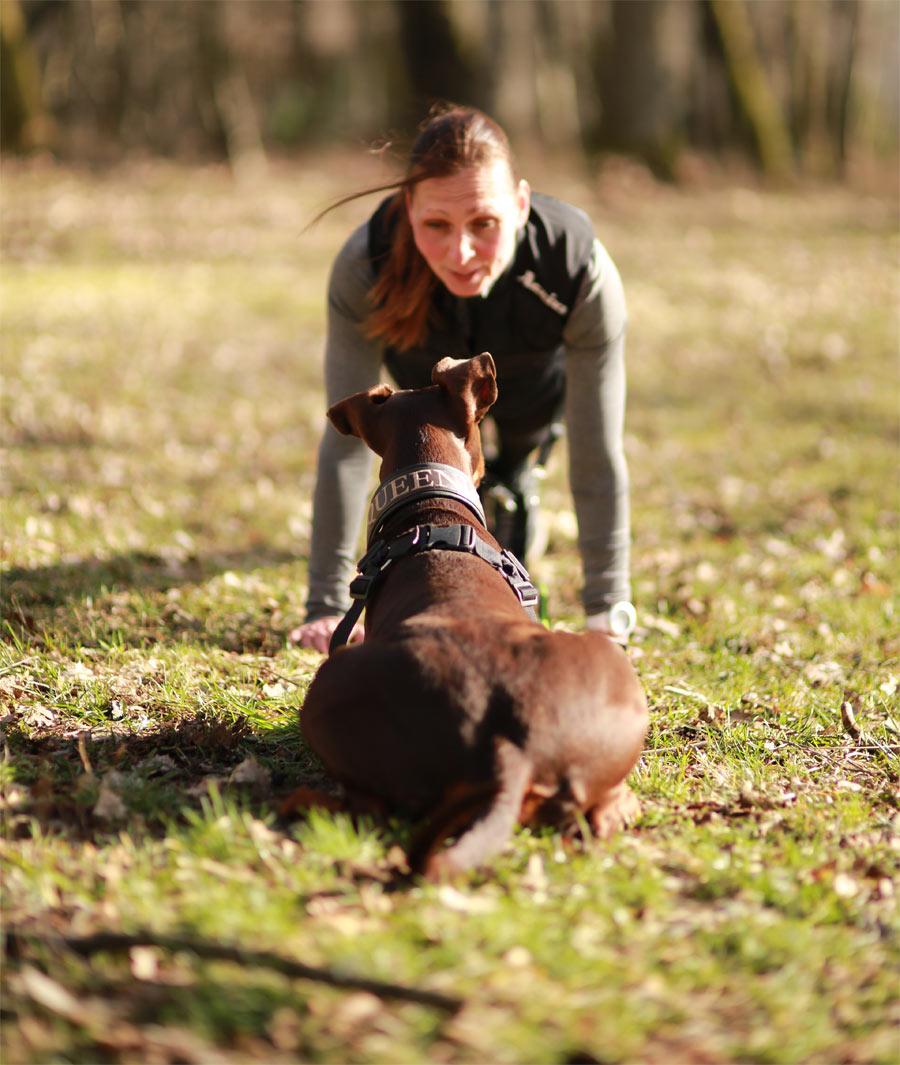 hundcoach-ingar